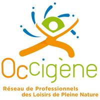 Le réseau Occigène